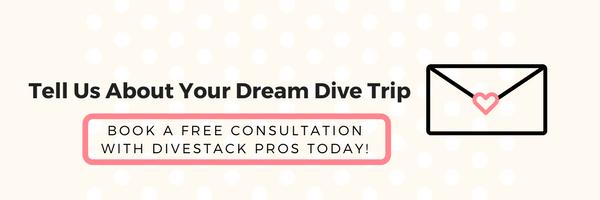 Scuba Diving Trip Free Consultation