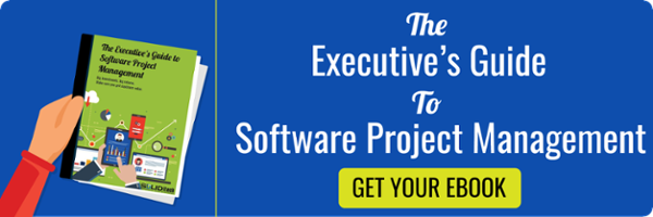 Download | The Executive's Guide to Software Project Management
