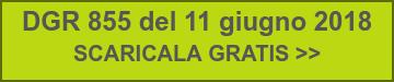 DGR 855 del 11 giugno 2018  SCARICALA GRATIS >>