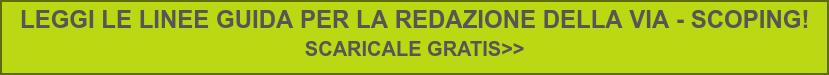 LEGGI LE LINEE GUIDA PER LA REDAZIONE DELLA VIA - SCOPING!  SCARICALE GRATIS>>