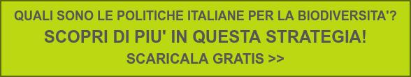 QUALI SONO LE POLITICHE ITALIANE PER LA BIODIVERSITA'?  SCOPRI DI PIU' IN QUESTA STRATEGIA!  SCARICALA GRATIS >>