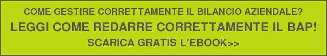 COME GESTIRE CORRETTAMENTE IL BILANCIO AZIENDALE?  LEGGI COME REDARRE CORRETTAMENTE IL BAP!  SCARICA GRATIS L'EBOOK>>
