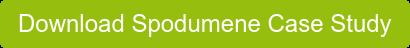 Download Spodumene Case Study
