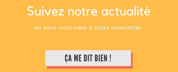 Inscription Newsletter Autodidaxy