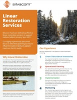 Download our Linear Restoration Services Information sheet to learn more about caribou habitat recovery