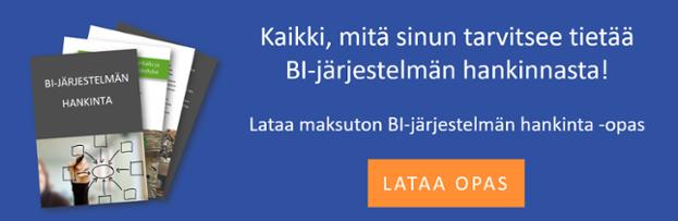 BI_jarjestelman_hankinta_lataa_opas