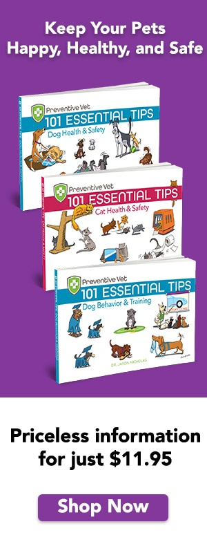 Essential dog and cat health, safety, behavior and training tips
