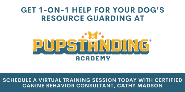 schedule a private virtual session with certified canine behavior consultant cathy madson