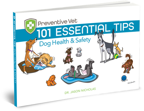 Dog health and safety tips book