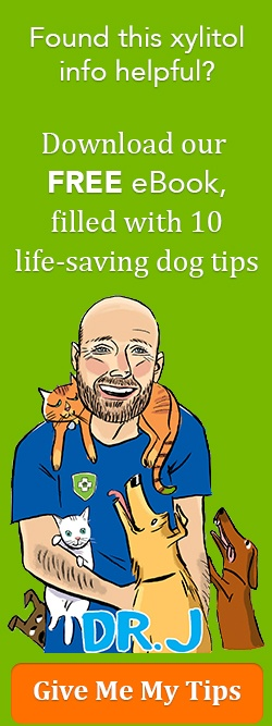 Dog Health and Safety 10 Tip eBook