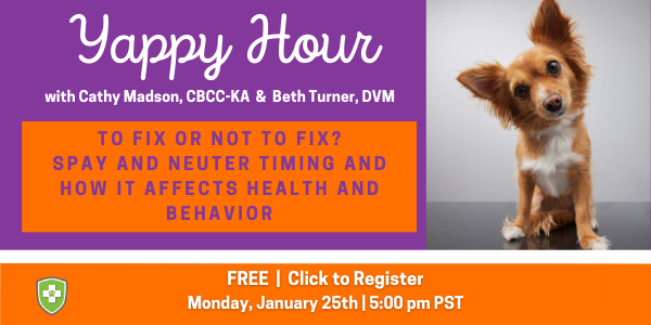 Register for Yappy Hour: To Fix or Not to Fix? Spay and Neuter Timing and How it Affects Health and Behavior