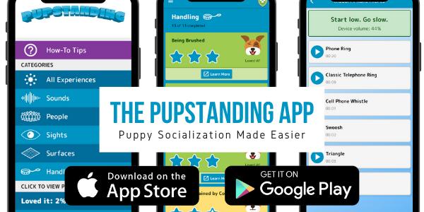 free puppy socialization app