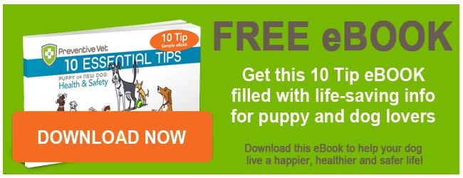 10 Tips eBook by Dr. Jason Nicholas
