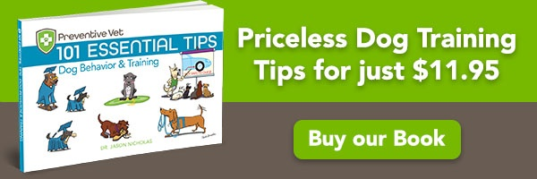 101 Dog Behavior and Training Tips Book