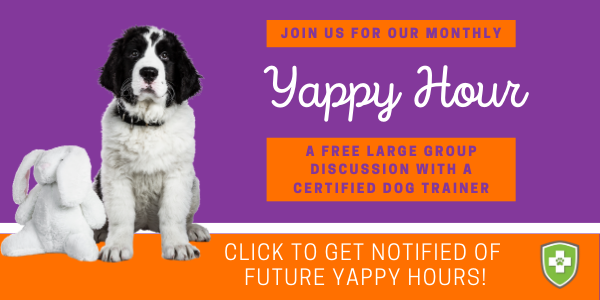Get notified of future Yappy Hour events