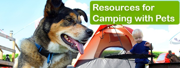 Resources for Camping with Pets