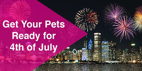 pet resources for 4th of July