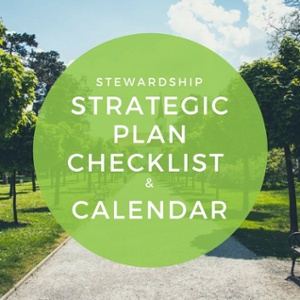 stewardship strategic plan