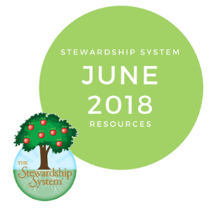 Stewardship System June 2018