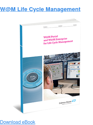 W@M Life Cycle Management Download eBook