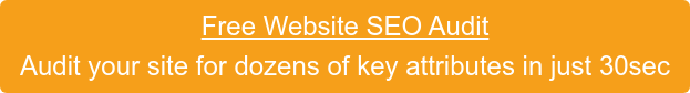 Free Website SEO Audit Audit your site for dozens of key attributes in just 30sec