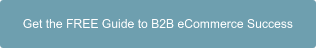 Get the FREE Guide to B2B eCommerce Success