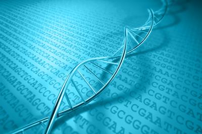 GENEWIZ Genomics Services
