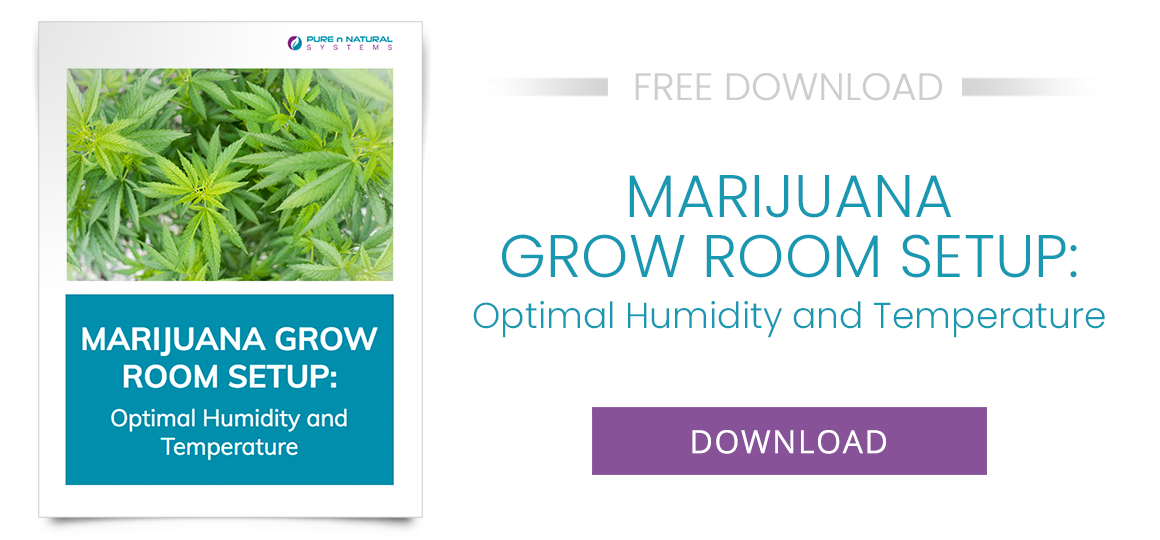 Marijuana Grow Room Setup: Optimal Humidity and Temperature