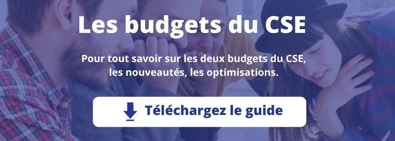 Les budgets du CSE : nouveautés et optimisations. Téléchargez le guide
