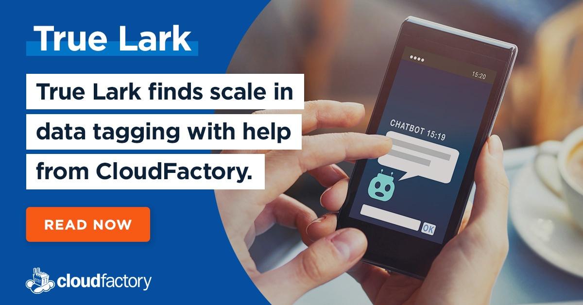 Download a copy of True Lark's case study.