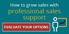 professional sales support