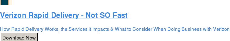 Verizon Rapid Delivery - Not SO Fast  How Rapid Delivery Works, the Services it Impacts & What to Consider When  Doing Business with Verizon Download Now