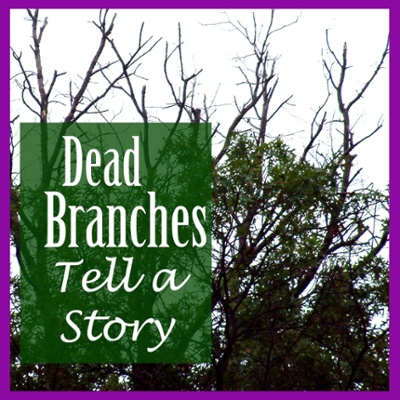 Dead branches tell a story