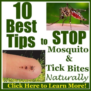10 Best Tips to Stop Mosquito and Tick Bits Naturally
