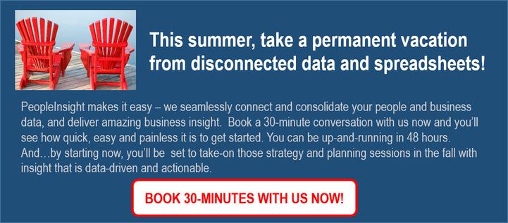 Summer Offer - PeopleInsight Consultation