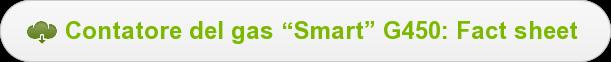 "Contatore del gas ""Smart"" G450: Fact sheet"