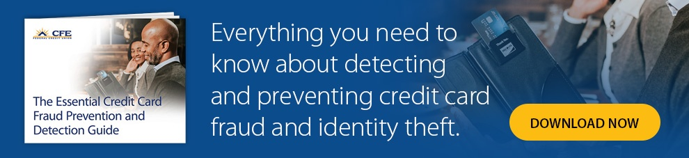 The Essential Credit Card Fraud Prevention and Detection Guide