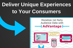 Our Infographic shows how to Monetize Your 1st Party Audience Data