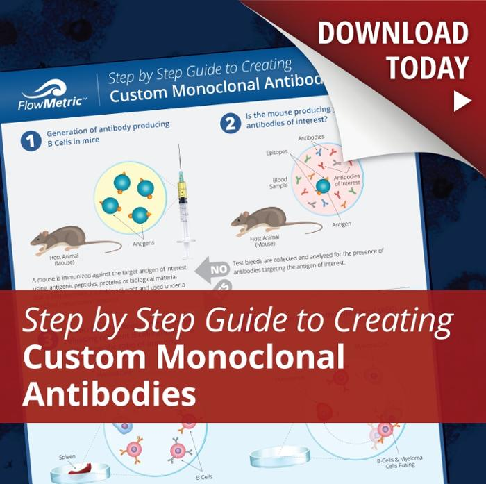 Custom Monoclonal Antibodies [INFOGRAPHIC]