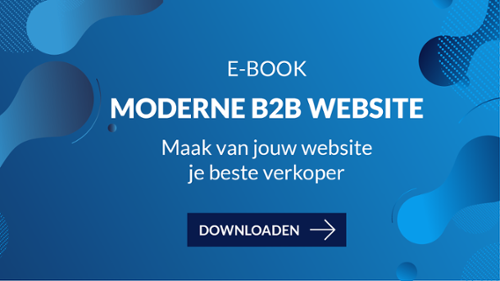 moderne b2b website