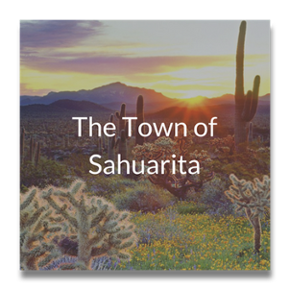 Town of Sahuarita Case Study