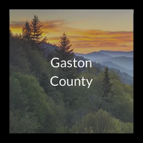 Gaston County Case Study