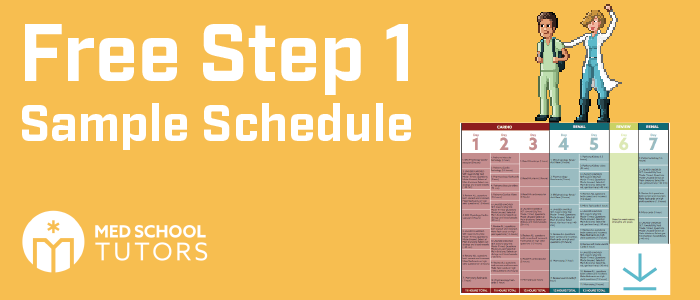 free-usmle-step-1-sample-schedule
