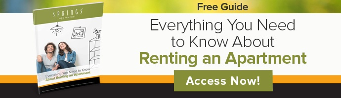 Everything You Need to Know About Renting an Apartment