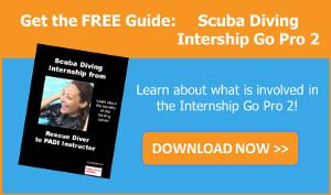 Get the guide Scuba Diving Internship Go Pro 2