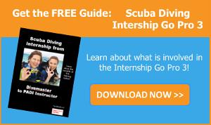 Get the guide Scuba Diving Internship Go Pro 3