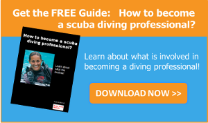 Download the guide How to become a scuba diving professional