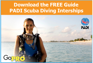 Do your Scuba Diving Internship with Happy Divers Marbella