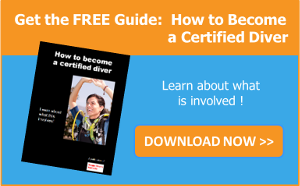 Download the guide: How to become a Certified Diver
