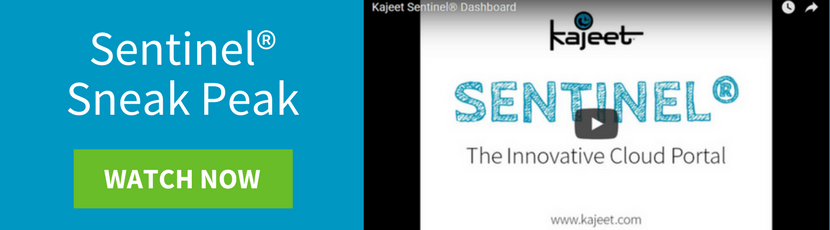 Sentinel Demo Video